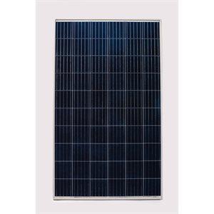Panneau solaire 275W polycristallin RenewSys